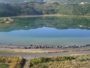 Viaggio alchemico nello specchio di venere - Ristorante lago lo specchio ...