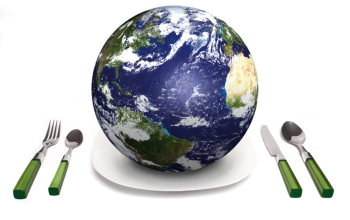 Tesina sull 39 alimentazione e la sua sostenibilit maturit 2015 for La sua e la sua costruzione