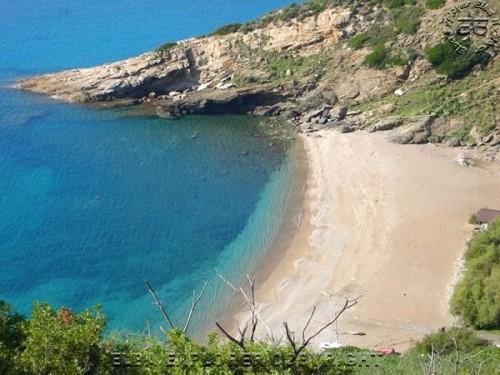 spiagge elba 8