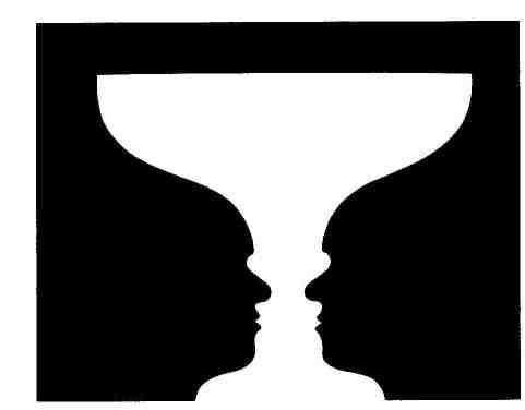 percezione e interpretazione dei fenomeni il vaso di rubin
