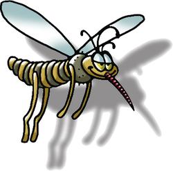 Rimedi naturali contro le zanzare che possiamo trovare in casa - Contro le zanzare in casa ...